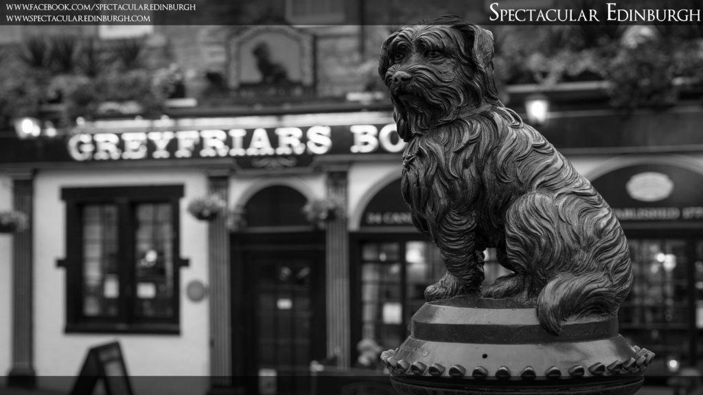 Wallpaper 6 - Greyfriar's Bobby - Spectacular Edinburgh Photography